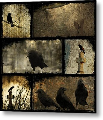 Crows And One Rabbit Metal Print by Gothicrow Images