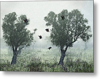 Crows In The Mist Metal Print by S. Amer