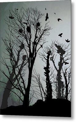 Crows Roost 1 Metal Print by Philip Openshaw