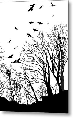 Crows Roost 2 - Black And White Metal Print by Philip Openshaw