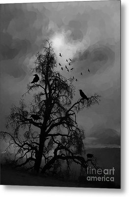 Crows Wild  Metal Print by Gull G