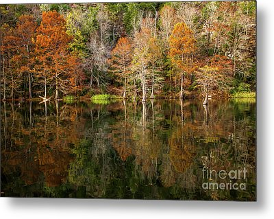 Metal Print featuring the photograph Crystal Clear by Iris Greenwell