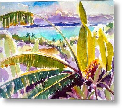 Culebra And Bananas Metal Print by Barbara Richert