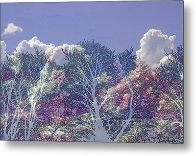 Metal Print featuring the photograph Cumulus And Trees by Nareeta Martin