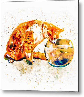 Curious Cat  Metal Print by Marian Voicu