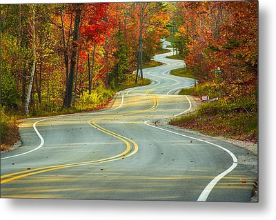 Curvaceous Metal Print by Bill Pevlor