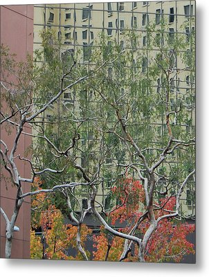 Curves And Lines Metal Print by Jean Booth