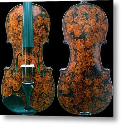 Custom Gliga Viola Metal Print by Dino Muradian