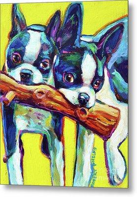 Cute Boston Terriers Metal Print
