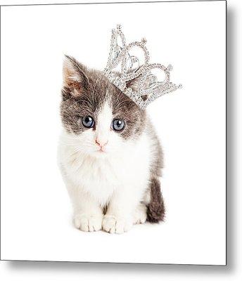 Cute Kitten Wearing Princess Crown Metal Print by Susan Schmitz