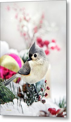 Cute Winter Bird - Tufted Titmouse Metal Print by Christina Rollo