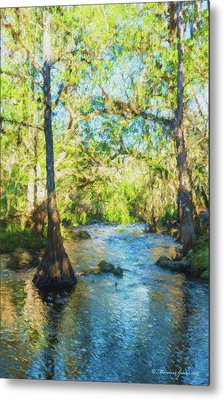 Cypress Trees On The River Metal Print by Marvin Spates