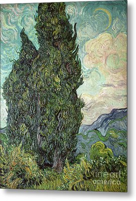 Cypresses Metal Print by Vincent Van Gogh