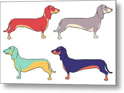 Dachshunds Metal Print by Kelly Jade King