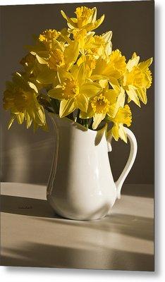 Daffodil Filled Jug Metal Print by Sandra Foster