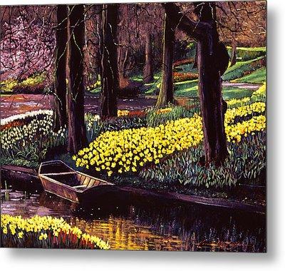 Daffodil Park Metal Print