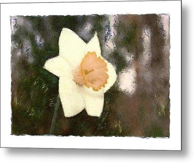 Daffodil Metal Print by Sandy Belk