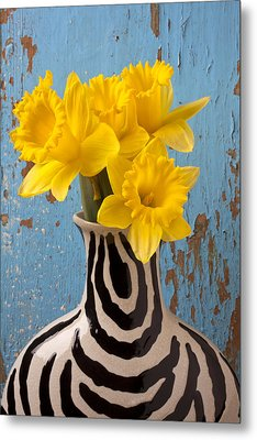 Daffodils In Wide Striped Vase Metal Print by Garry Gay