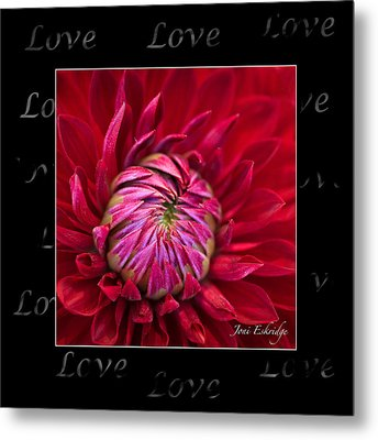 Dahlia Of Love Metal Print by Joni Eskridge