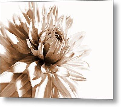 Dahlia Sepial Flower Metal Print by Jennie Marie Schell