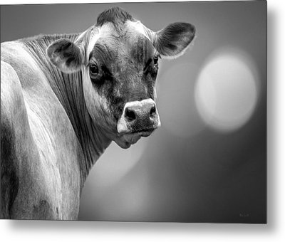 Dairy Cow Elsie Metal Print by Bob Orsillo