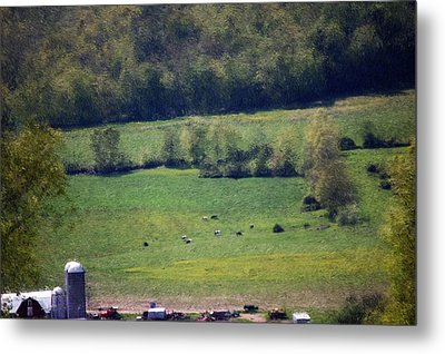 Dairy Farm In The Finger Lakes Metal Print by David Lane
