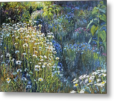 Daisies And Shades Of Blue Metal Print by Steve Spencer