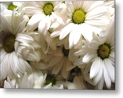 Metal Print featuring the photograph Daisies Make Me Smile by Laura  Grisham