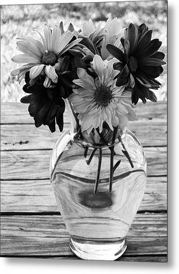 Daisy Crazy Bw Metal Print by Angelina Vick