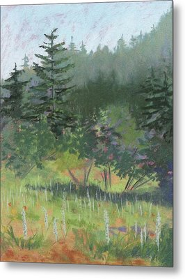 Dale Creek Meadow Metal Print