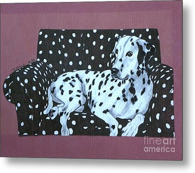 Metal Print featuring the drawing Dalmatian On A Spotted Couch by Terri Mills
