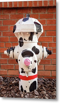 Metal Print featuring the photograph Dalmation Hydrant by James Eddy
