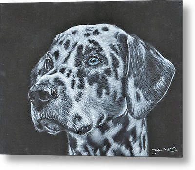 Dalmation Portrait Metal Print
