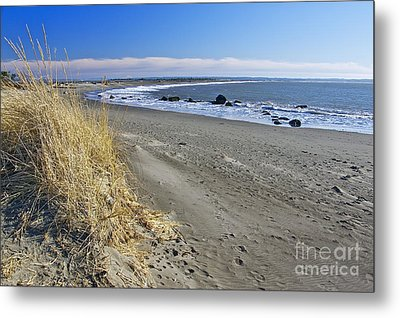 Damon Point Metal Print