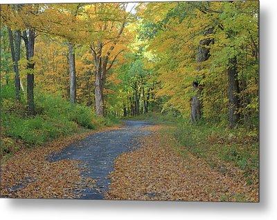 Dana Common Road In Autumn Quabbin Reservoir Metal Print by John Burk