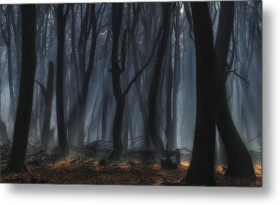 Dancing Trees Metal Print by Jan Paul Kraaij