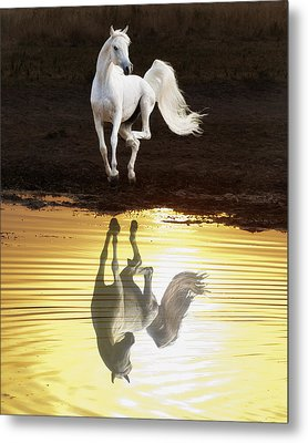 Dancing With Myself Metal Print by Ron  McGinnis