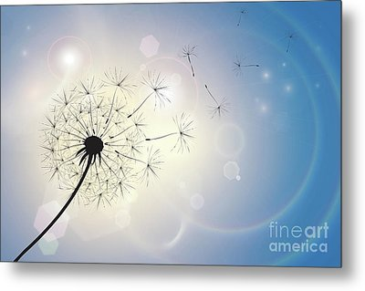 Dandelion In A Summer Breeze Metal Print
