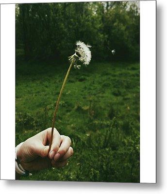 #dandelionclock #dandelion #nature Metal Print by Natalie Anne