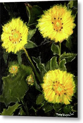 Dandelions By Mary Krupa  Metal Print by Bernadette Krupa