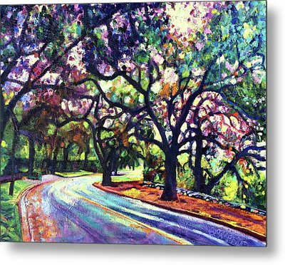 Dappled Lane Through The Arroyo Metal Print