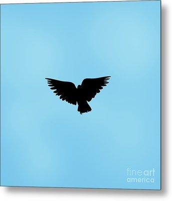 Dark Angel Metal Print by Linsey Williams