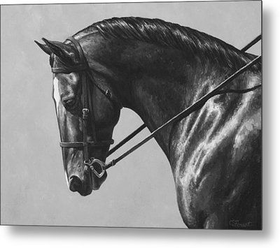 Dark Brown Dressage Horse Black And White Metal Print