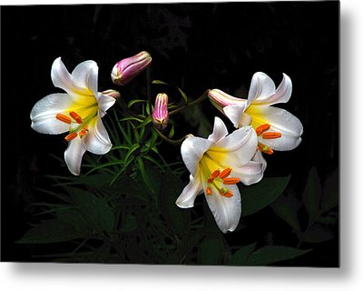Metal Print featuring the photograph Dark Day Bright Lilies by Byron Varvarigos