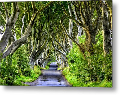 Dark Hedges Metal Print