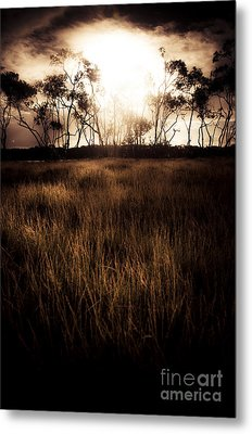Dark Wetland Sunset Scene Metal Print