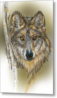 Metal Print featuring the digital art Dark Wolf With Birch by Darren Cannell