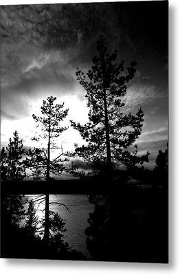 Darkness Crawls Metal Print by Leah Moore