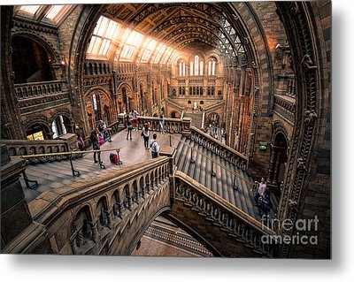 Darwin And Friends Metal Print by Giuseppe Torre