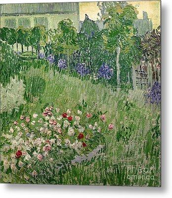 Daubigny's Garden Metal Print by Vincent Van Gogh